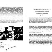 Black Liberation and the Abolition of the Prison Industrial Complex:  a conversation with Rachel Herzing